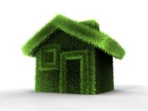 Gras-Haus lizenzfreie abbildung