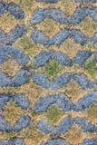 Gras in het vierkante gat van concrete plakken op Stock Afbeeldingen