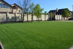 Gras & huis royalty-vrije stock foto's