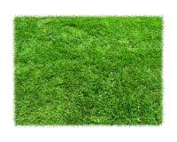 Gras ist grüne Rechtecke auf weißem Hintergrund Stockfotografie