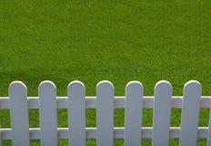 Gras ist grüner Stockfoto