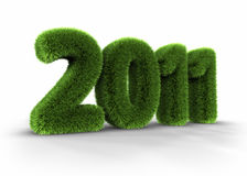 Gras-Jahr 2011 vektor abbildung