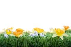 Gras met de lentebloemen stock afbeeldingen
