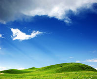 Gras met een blauwe hemel