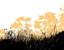 Gras mit orange Mohnblumeblumen. Vektor Stockfotos