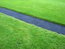 Gras mit Weg Stockbilder