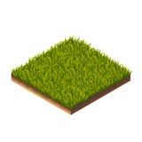 Gras-Muster isometrisch Lizenzfreie Stockfotos
