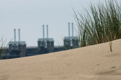Gras op een duin dichtbij de Deltawerken Stock Foto