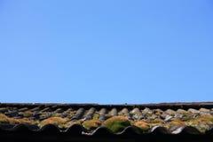 Gras op het dak en de blauwe hemel contrasting stock fotografie