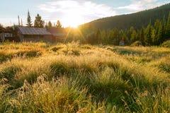Gras op het gebied in de dauw met dorpshuizen bij dageraad Stock Afbeeldingen