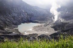 Gras op voorgrond van vulkaanberg Royalty-vrije Stock Afbeelding