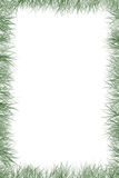 Gras-Rand Stockbild