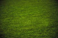 Gras-Spielplatz Stockfotografie