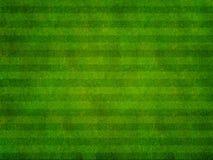 Gras-Sport-Feld-Draufsicht Stockbild