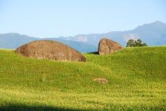 Gras, Stein und Berg lizenzfreie stockfotos