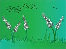 Gras-stellen Sie grafisch dar Stock Abbildung