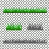 Gras, Sträuche Ein Satz verschiedene Arten des Grases Satz Gras auf einem transparenten Hintergrund Stockfotografie