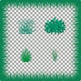 Gras, Sträuche Ein Satz verschiedene Arten des Grases Satz Gras auf einem transparenten Hintergrund Lizenzfreie Stockfotos
