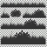 Gras, Sträuche Ein Satz verschiedene Arten des Grases Satz Gras auf einem transparenten Hintergrund Stockbild