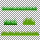 Gras, Sträuche Ein Satz verschiedene Arten des Grases Satz Gras auf einem transparenten Hintergrund Lizenzfreies Stockbild