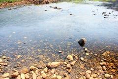 Gras, stromen, rivieren, rotsen Royalty-vrije Stock Foto