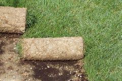 Gras-Teppich Rolls Lizenzfreie Stockfotografie