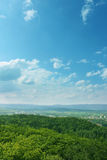 Gras und Bäume auf blauem Himmel lizenzfreie stockfotografie