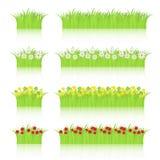 Gras und Blumen eingestellt Stockbild
