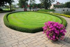 Gras und Blumen, Knall-PA innen Stockfotos