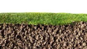 Gras und Boden Lizenzfreie Stockfotos