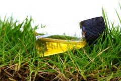 Gras- und Bodenbehandlung Lizenzfreie Stockfotografie
