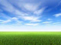 Gras und Himmel stock abbildung