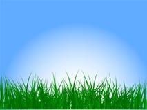 Gras und Himmel lizenzfreie abbildung