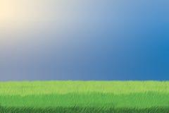 Gras und Himmel Lizenzfreie Stockfotos