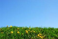 Gras- und Himmelhintergrund Stockfotos