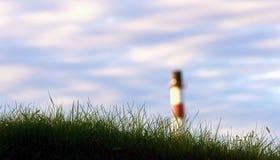 Gras und Kamin Lizenzfreie Stockbilder