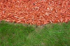 Gras und Laubdecke Stockfotos