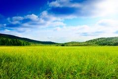 Gras und Nordberg lizenzfreie stockbilder