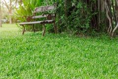 Gras und Stühle im Garten Lizenzfreie Stockfotografie