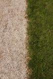 Gras und Stein Stockbild
