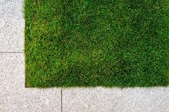 Gras und Steinpflasterung Lizenzfreie Stockfotografie