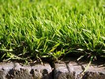 Gras- und Steinziegelstein Lizenzfreies Stockfoto