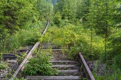 Gras verdes abandonados ferrocarril viejo fotografía de archivo