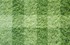 Gras voor achtergrond Stock Afbeelding