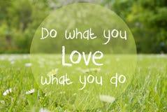 Gras-Wiese, Daisy Flowers, Zitat tun, was Sie lieben Lizenzfreie Stockfotografie
