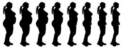 Grasa para adelgazar la silueta de la transformación de la pérdida de peso de la mujer ilustración del vector