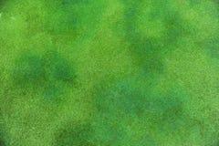 Grasachtergrond Royalty-vrije Stock Afbeeldingen