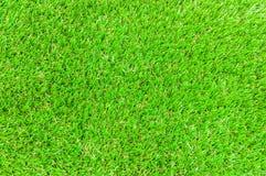 Grasachtergrond Royalty-vrije Stock Afbeelding