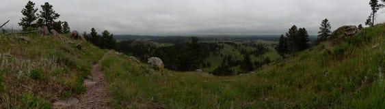 Grasartig übersehen Sie von Rankin Ridge stockfotos