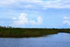 Grasartige Ausdehnung von Fluss verlängert auf Horizont stockfotos